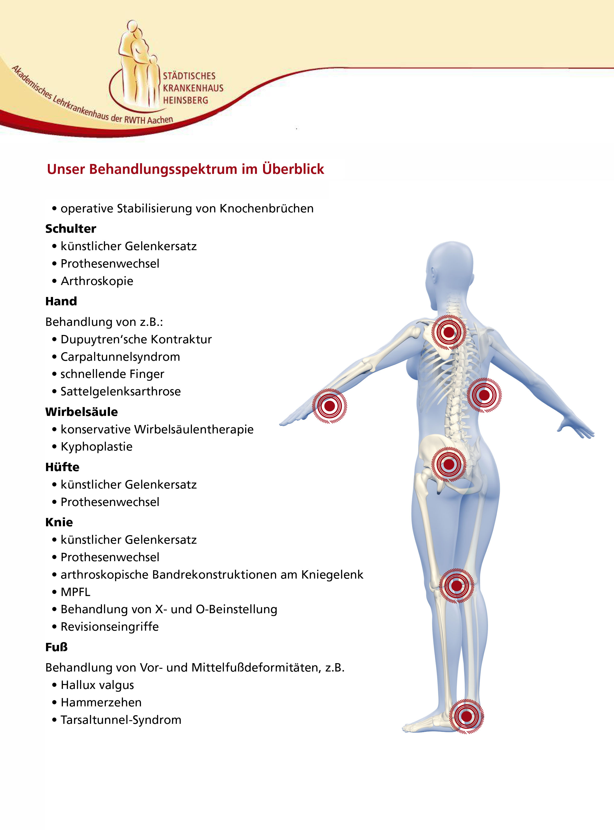 Erfreut Schulter Bänder Anatomie Bilder - Anatomie Von Menschlichen ...
