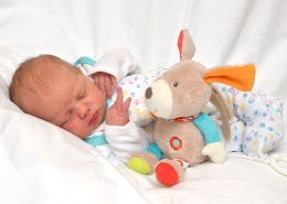 Babygalerie neuwerk